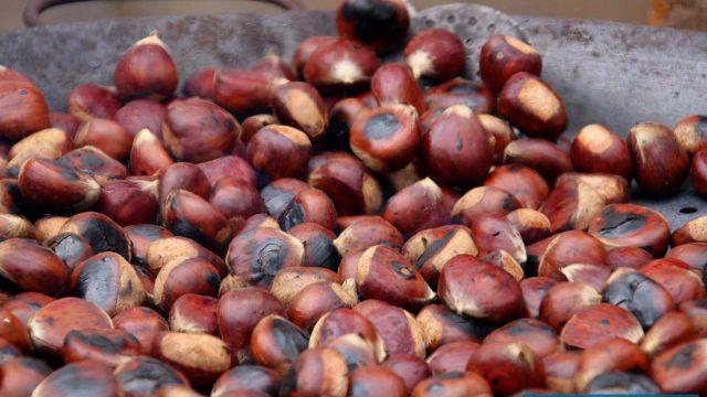 PUJERRA: Fiesta of the Chestnut and Virgen de Fátima