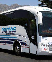 Damas / Grupo Interbus