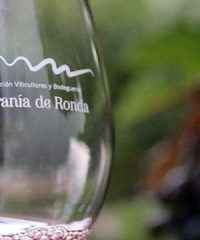 Milamores Wine Tourism