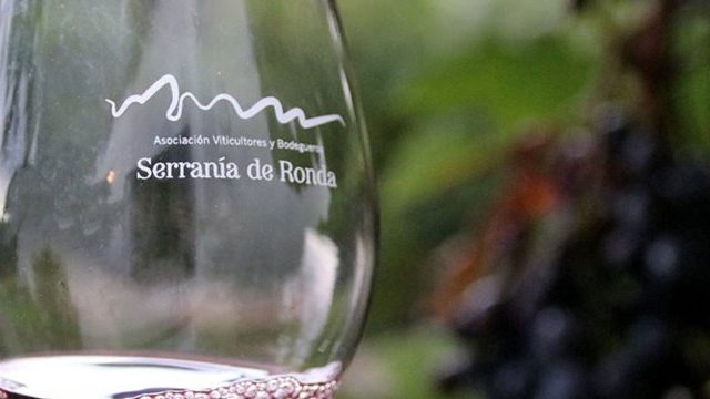Milamores Wine Tourism