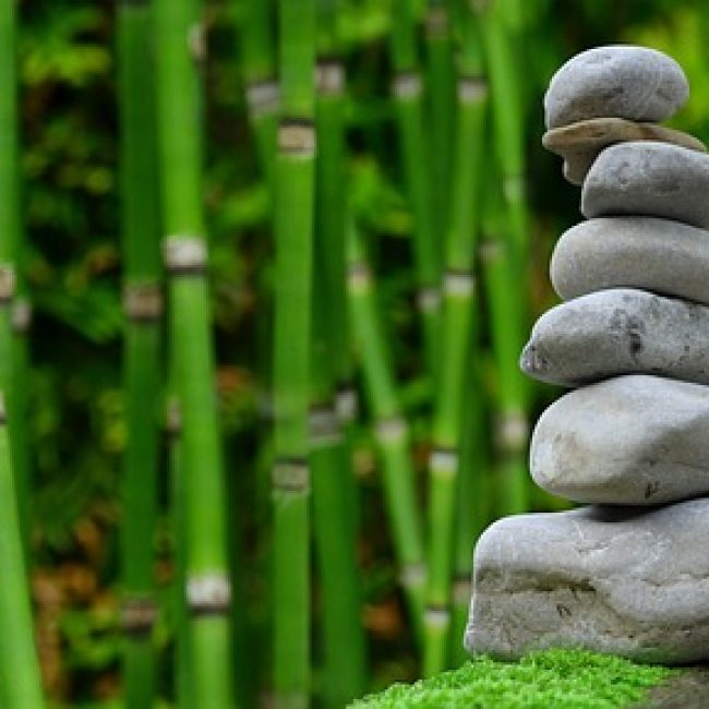 Body, Mind and Soul Retreat, Cartajima
