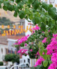 Town Hall – Montecorto