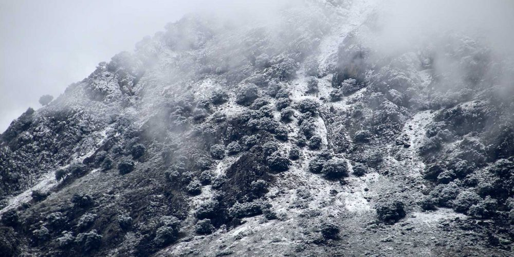 Jack Frost in Andalucía