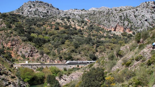 Our green day out in the Serrania de Ronda's Guadiaro Valley