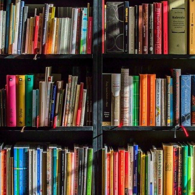 Book Swap, San Pablo de Buciete