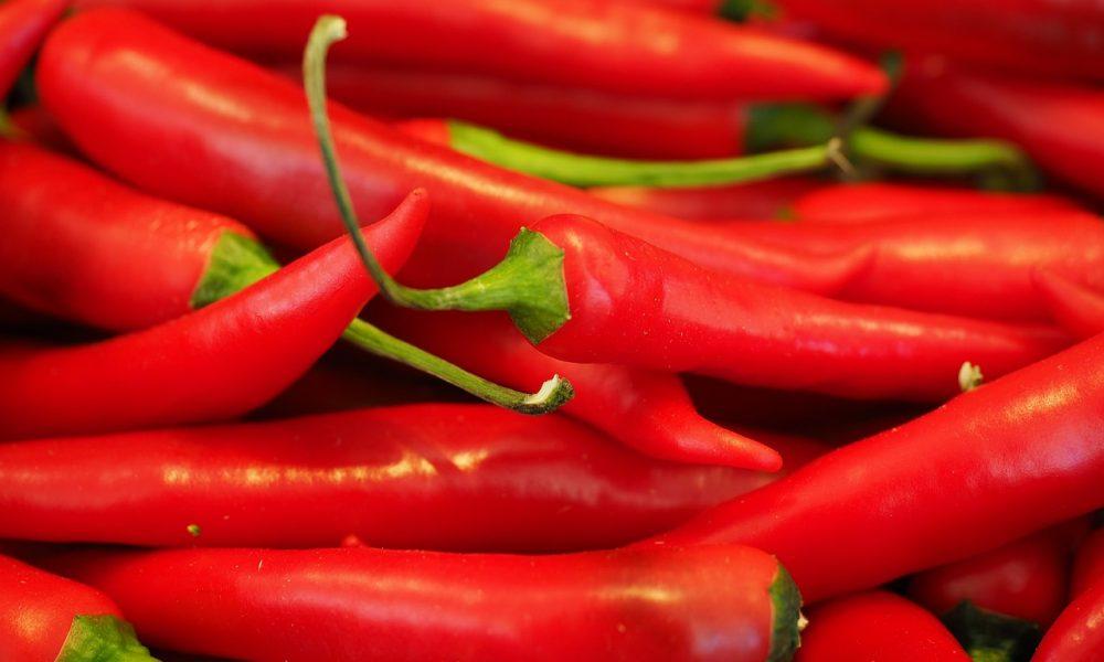 Rita's Serranía Chilli Soup