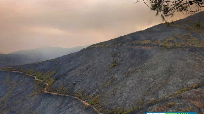 The huge Sierra de Bermeja fire is declared 'controlled'