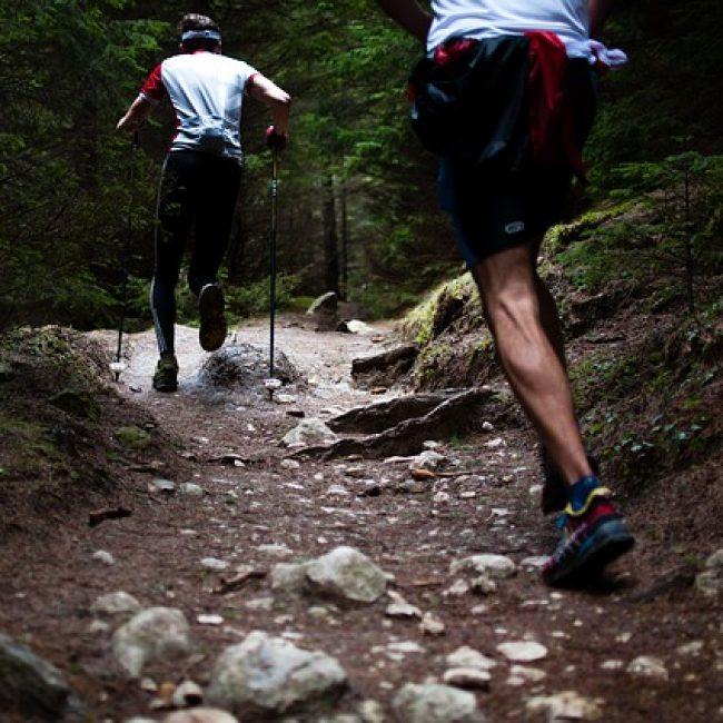 Three Trails Race, Jimera de Líbar