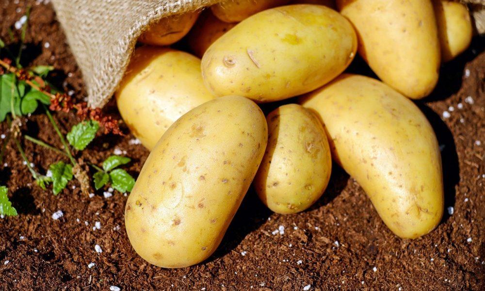 German cuisine hits the Serranía de Ronda with Rita's Kartoffelsalat