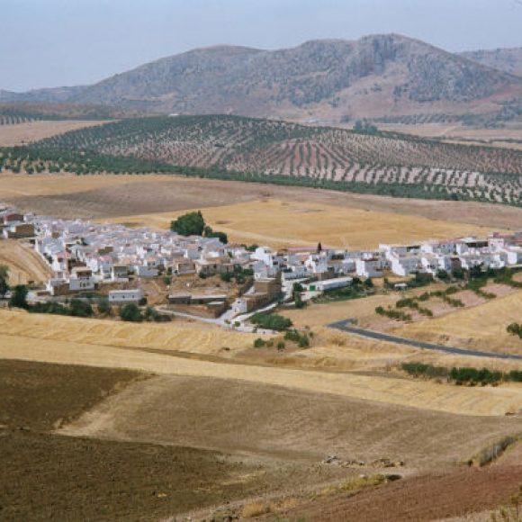 Serrato