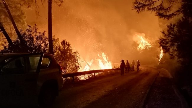 The Junta activates Level 1 of the Infoca Plan due to a wildfire in the Sierra Bermeja