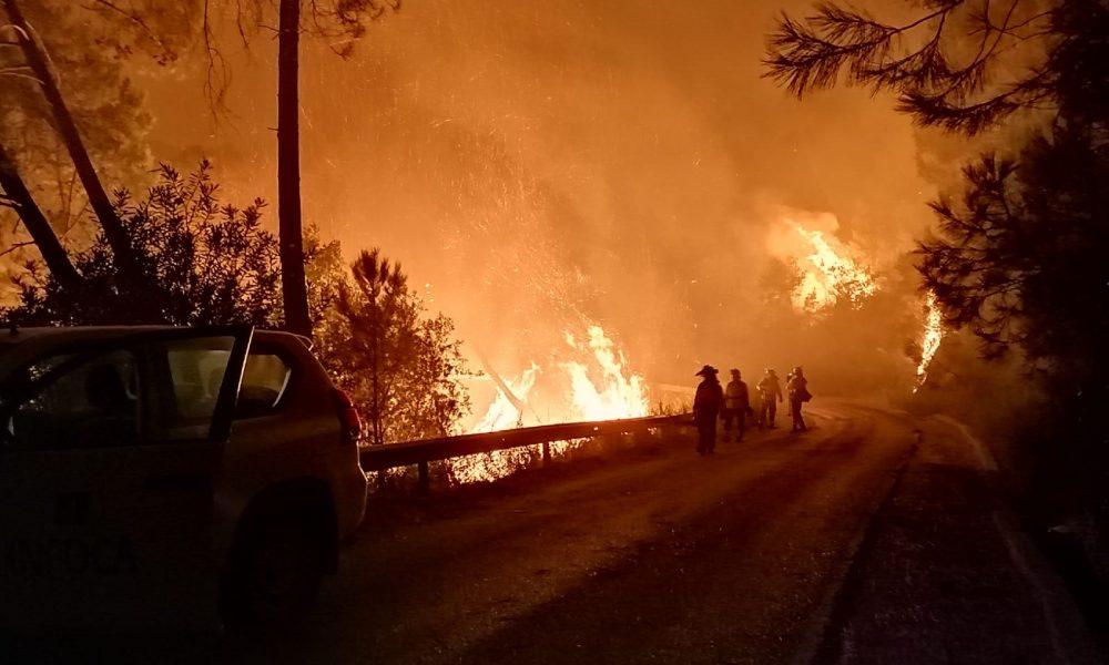 La Junta activa el nivel 1 del Plan Infoca por un fuego en Sierra Bermeja
