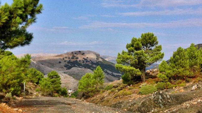 Walking and mountain biking in Spain's new Sierra de las Nieves National Park